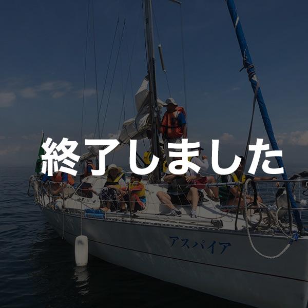 ヨット体験乗船